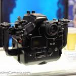 Nauticam housing for Canon 1Dx
