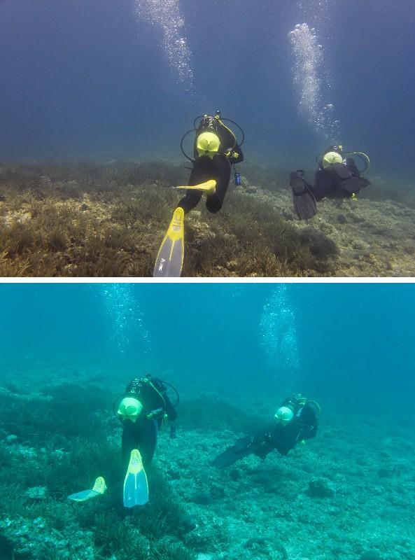 Red filter Underwater
