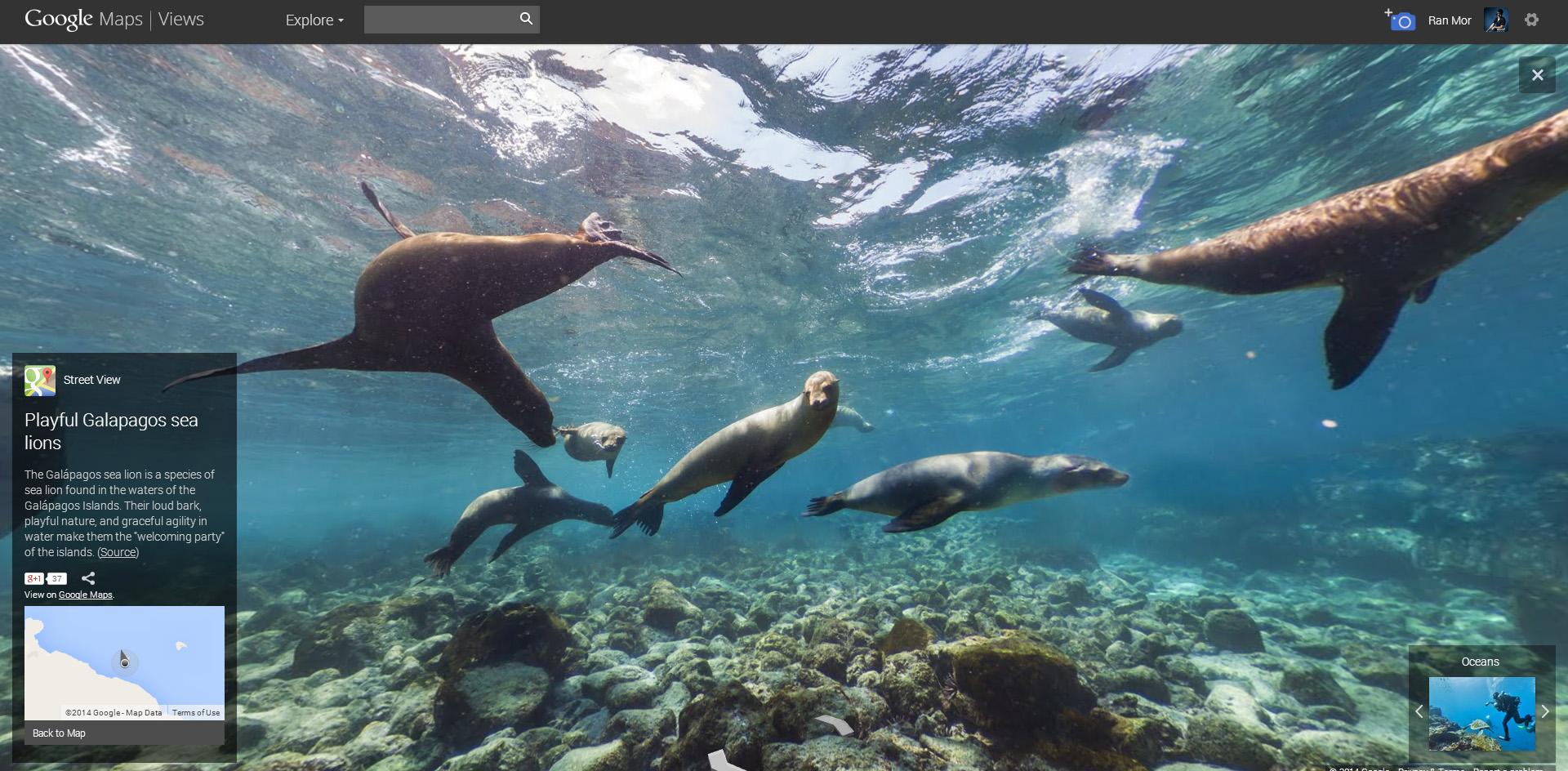 Google continues mapping the ocean floor | Mozaik UW on google oceans 3d, google earth atlantis coordinates, google earth finds atlantis, google earth sea floor, google earth ocean topography, google earth ocean map, google ocean atlantis,