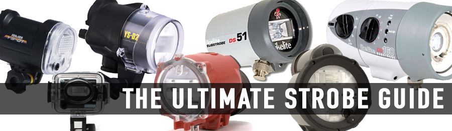 The Ultimate Underwater Strobe Guide
