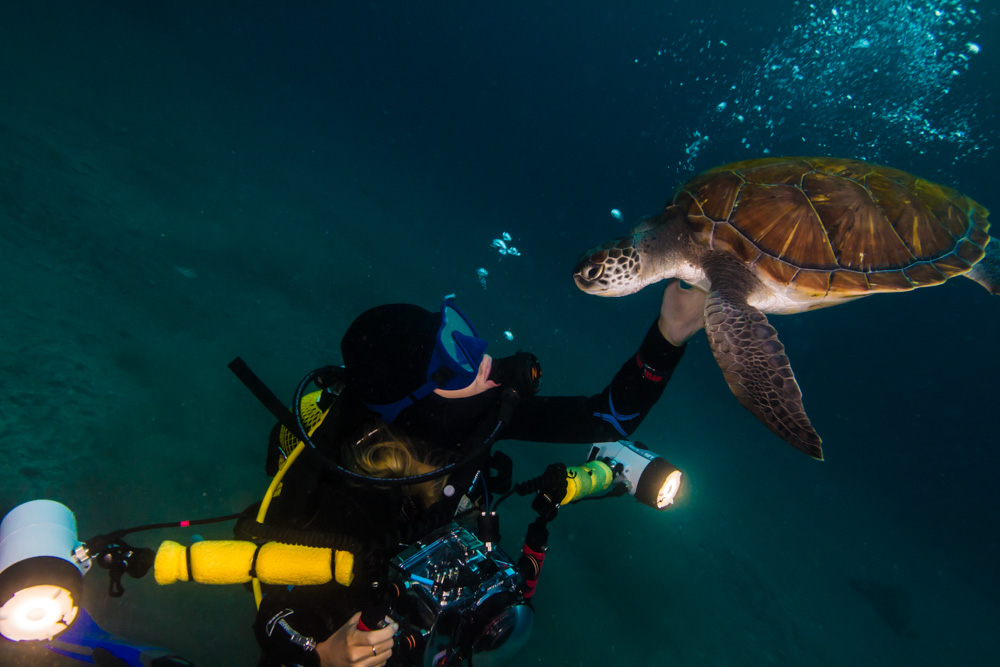© Julien Nedev | Plamena with turtles and gear