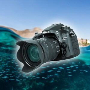 Using a DSLR underwater