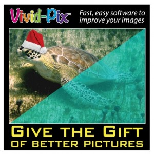 Give the Gift of Better Pictures - Santa Juan