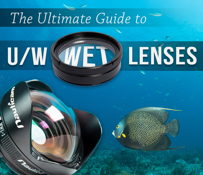 The Ultimate Guide to Underwater Wet Lenses