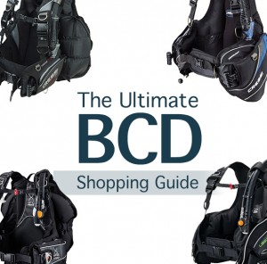BCD featured