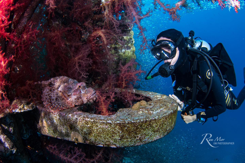 Nimar D500 Underwater
