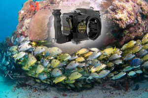 Nimar D500 Underwater Housing