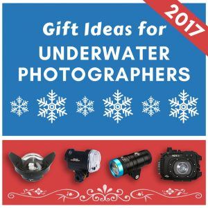 Christmas Gift Ideas For Underwater Photographers