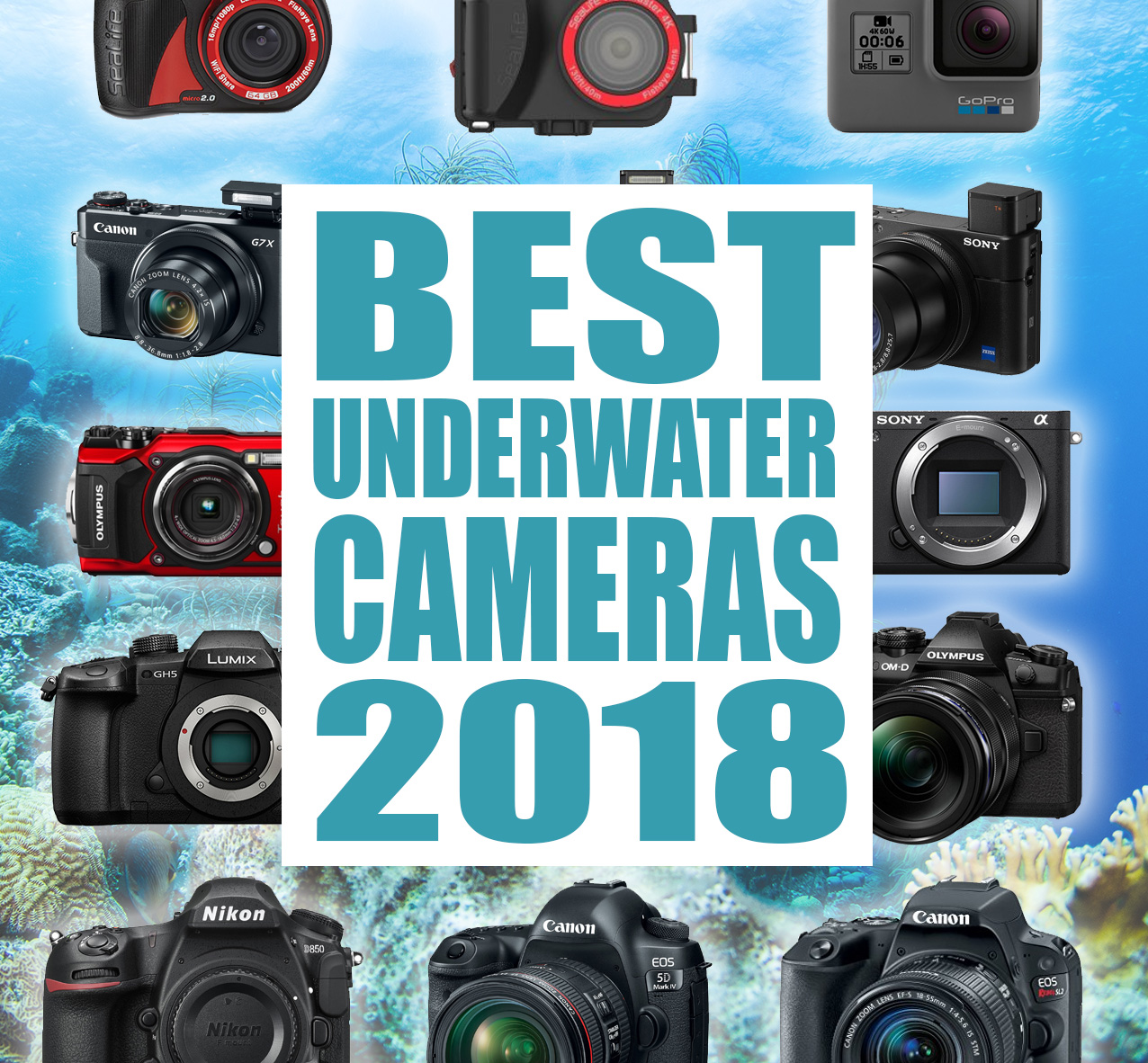 Camera for underwater shooting. Underwater camera - reviews, prices 80