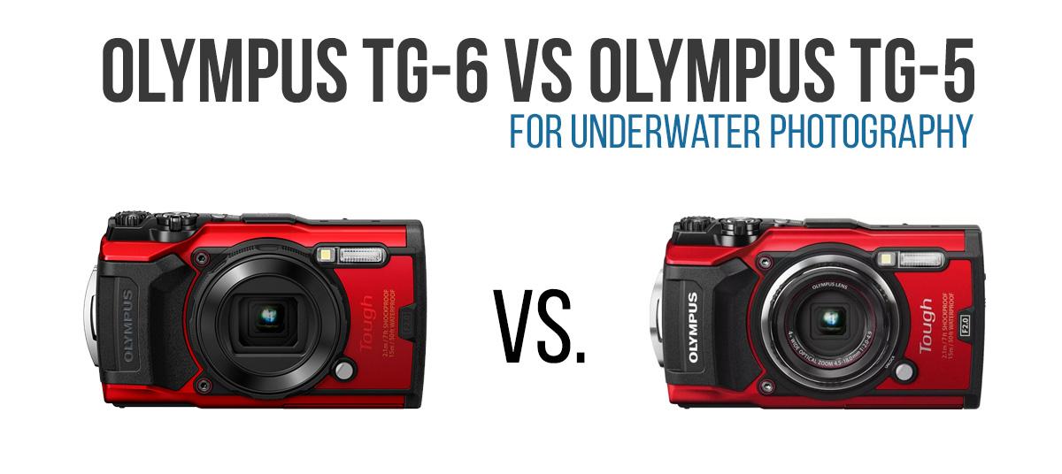 Olympus TG-6 vs TG-6