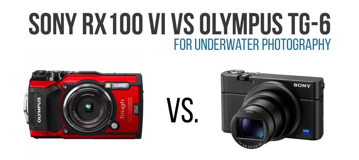 RX100 VI vs TG-6 for underwater photogrpahy