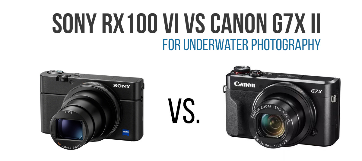 Sony RX100 VI vs Canon G7X II for underwater photography