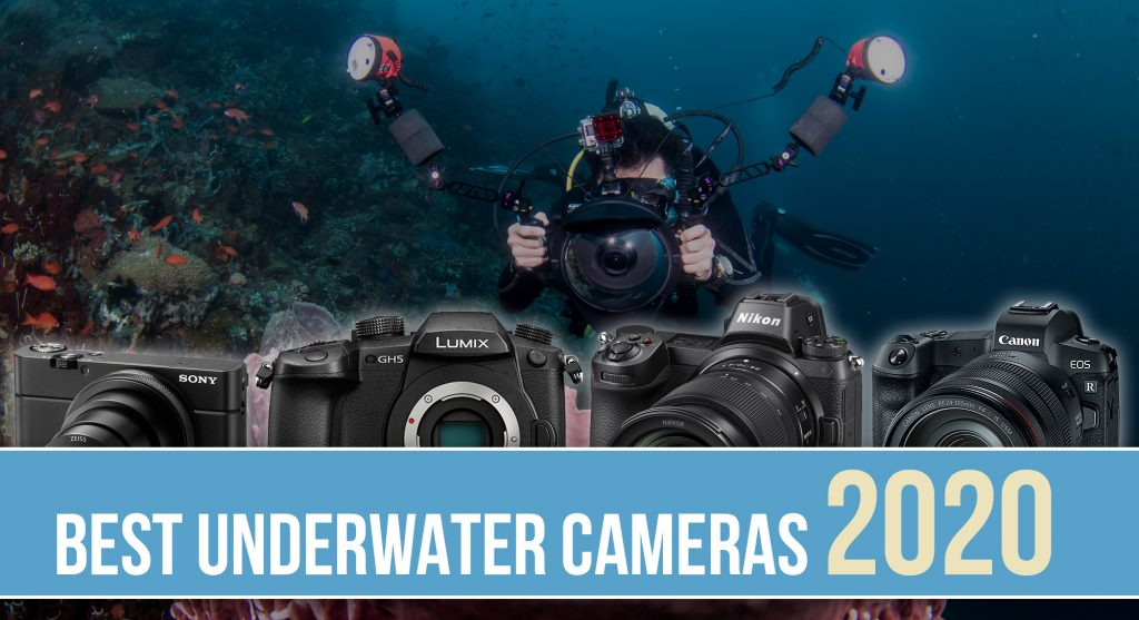 Buying guide for the best underwater cameras for 2020 - compact, mirrorless and dSLR