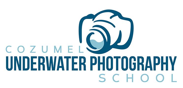 Cozumel Underwater Photography School