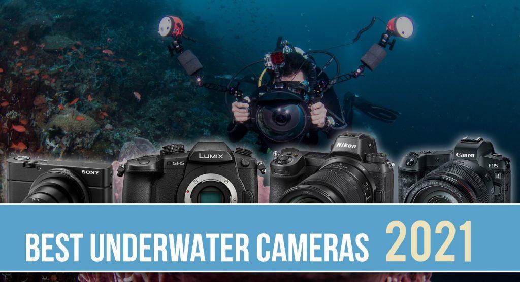 Best Underwater Cameras for 2021