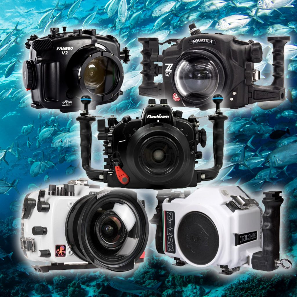 DSLR / Mirrorless underwater housings on ocean background