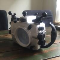 Seacam for Nikon D300
