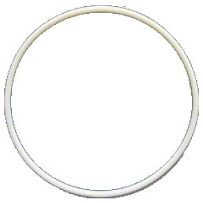 Fantasea - Main White O-Ring FRX & FG9X