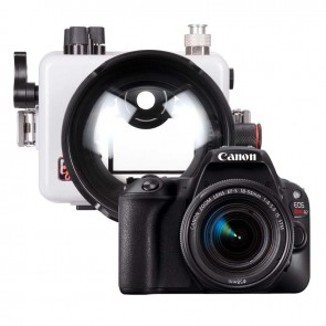 Canon EOS 200D / Rebel SL2 Camera and Ikelite Underwater Housing Bundle