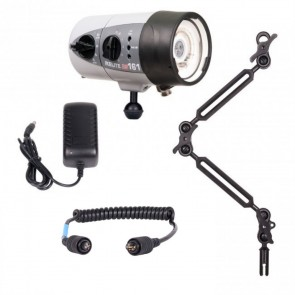 Ikelite DS161 -  Mounted on a Ikelite Ball Arm Light Set