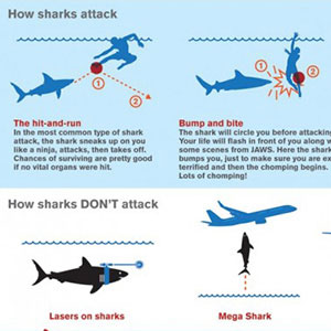 How Sharks Attack! Cool Infographic