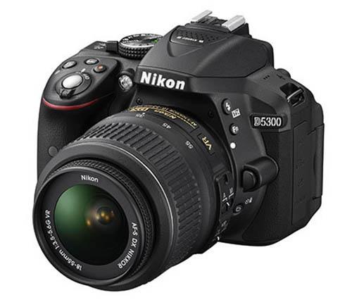 Nikon D5300 Underwater Housings