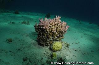 Underwater Strobe Beam